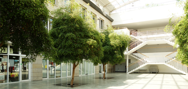 Edmund-Siemers-Allee 1, Westflügel Atrium