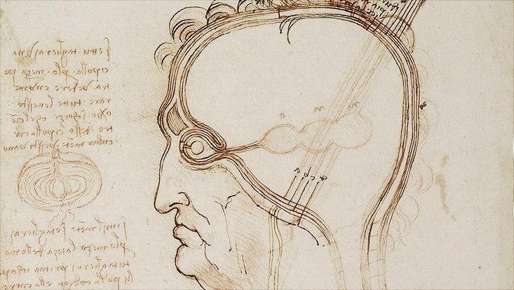 Skizze Leonardo da Vinci