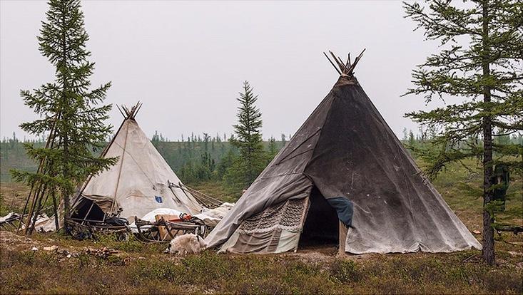 Selkupische Zelte