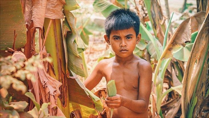 Südostasiatisch aussehender Junge mit nacktem Oberkörper inmitten eines Bananenbaum Feldes