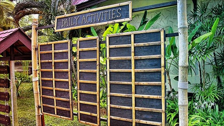"""Tafel aus Bambus mit der Aufschrift """"daily activities"""" umgeben von Palmen"""