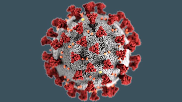 Corona-Virus-Symbolbild