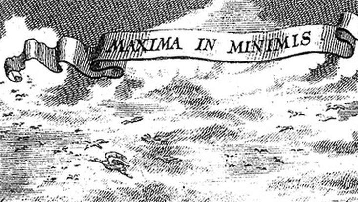 Maxima in Miminis