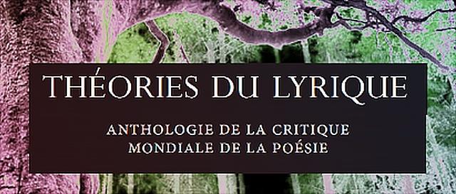 Théories du Lyrique