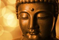 E-Learning Course by Bhikkhu Anālayo