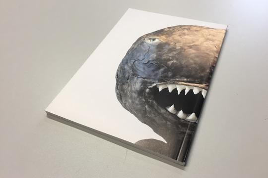 Projekt-Printpublikation