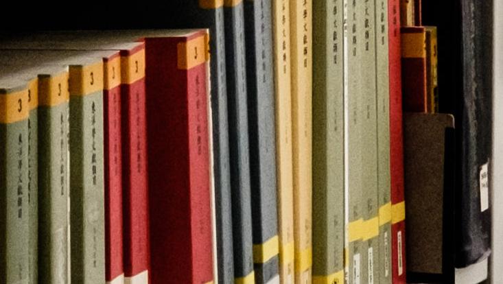 Ausschnitt Bücherregal