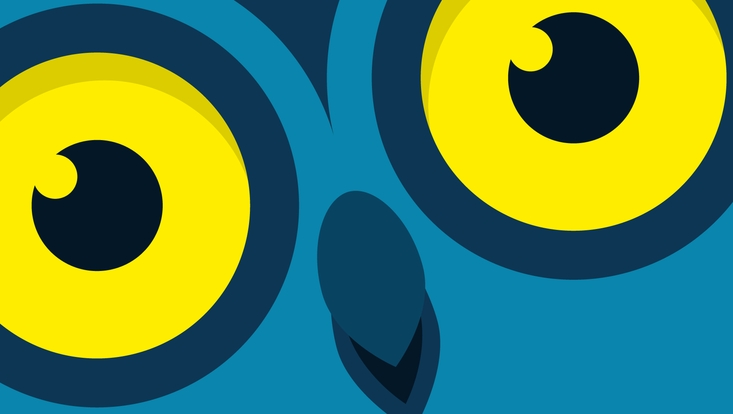 Nacht des Wissens Logo - Eule