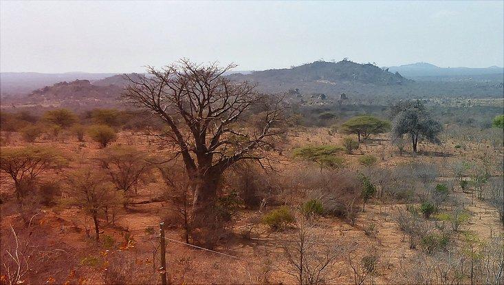 Zentral Tanzania